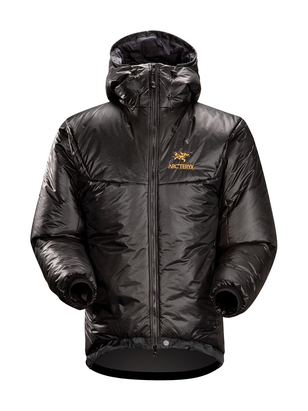 Arcteryx Black Dually Belay Parka